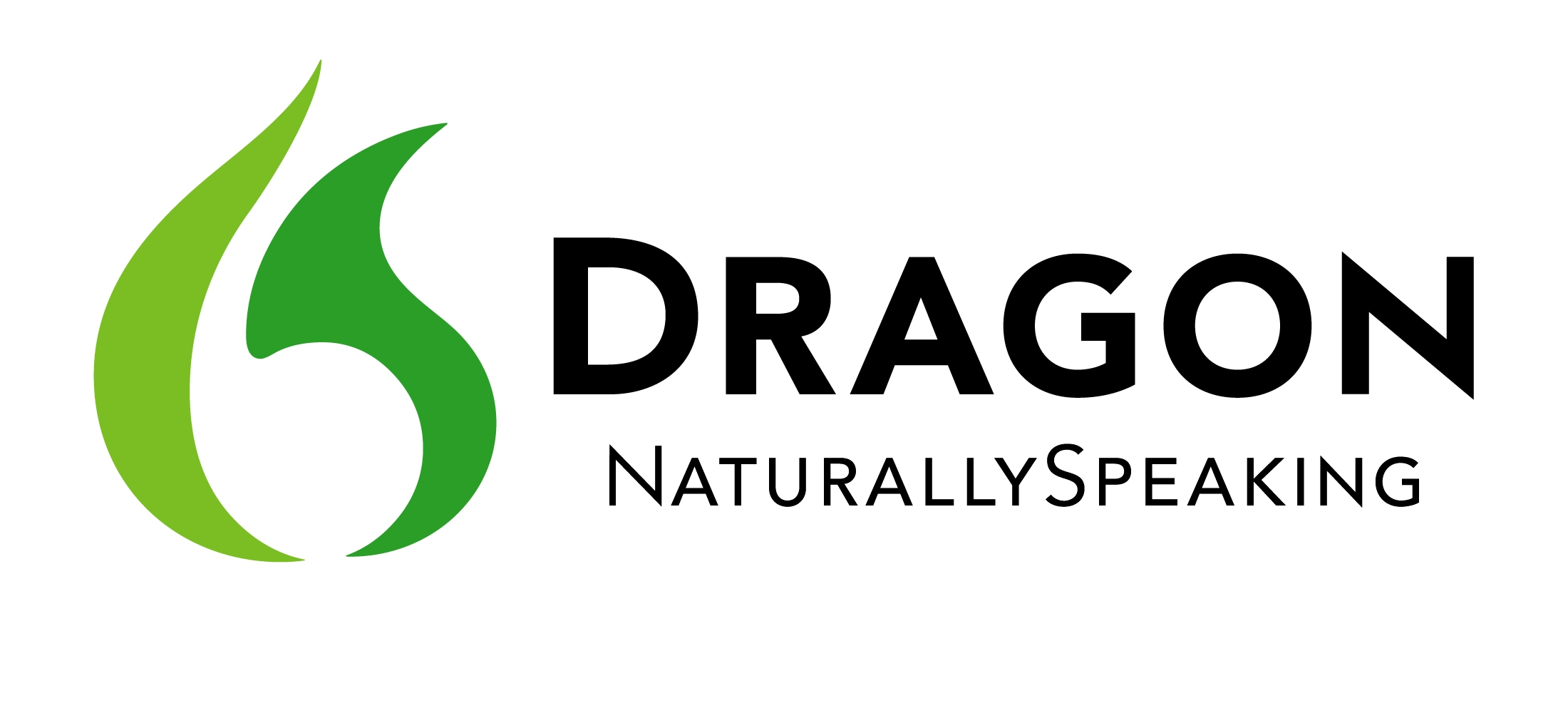 Dragon Naturally Speaking Logo